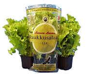 Entinen salaattipakkaus